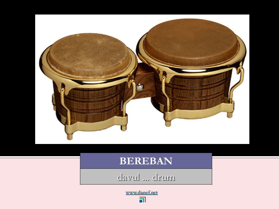 www.danef.net BEREBAN davul... drum
