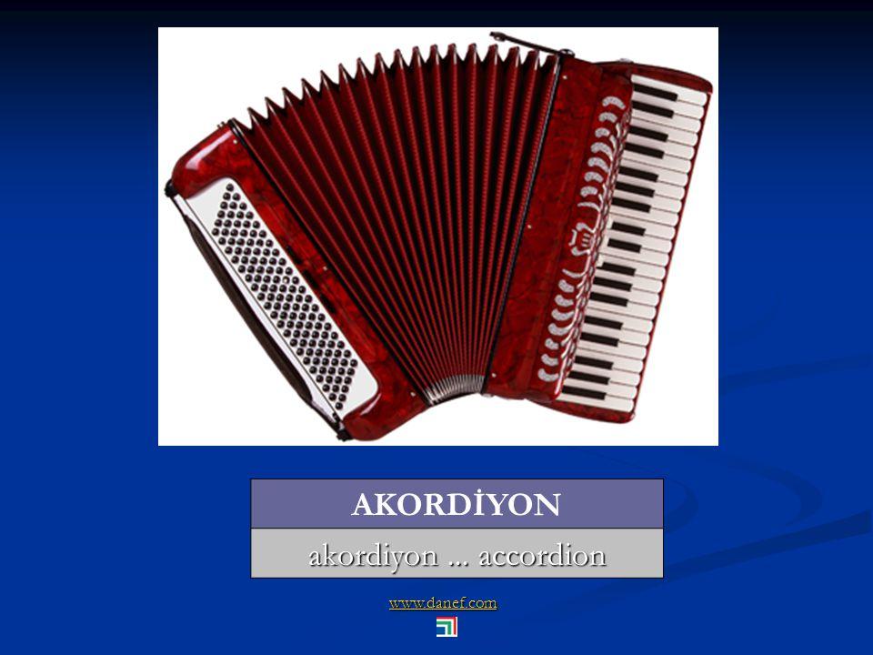 www.danef.com AKORDİYON akordiyon... accordion