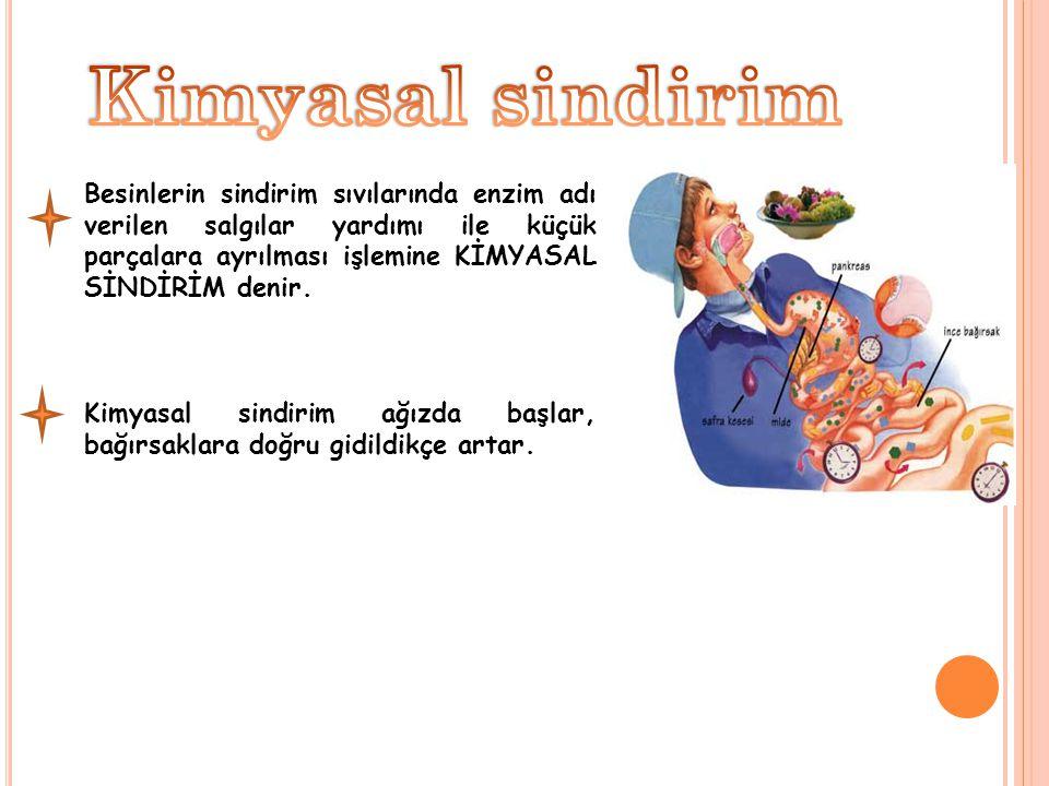 Besinlerin sindirim sıvılarında enzim adı verilen salgılar yardımı ile küçük parçalara ayrılması işlemine KİMYASAL SİNDİRİM denir. Kimyasal sindirim a