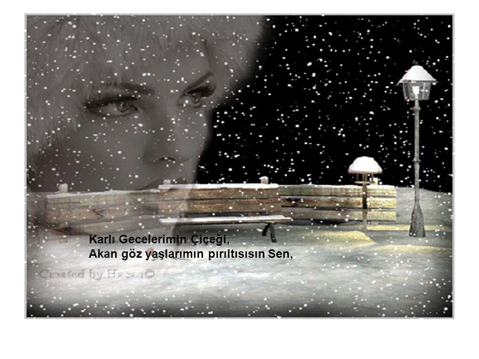 Karlı Gecelerimin Çiçeği, Akan göz yaşlarımın pırıltısısın Sen,