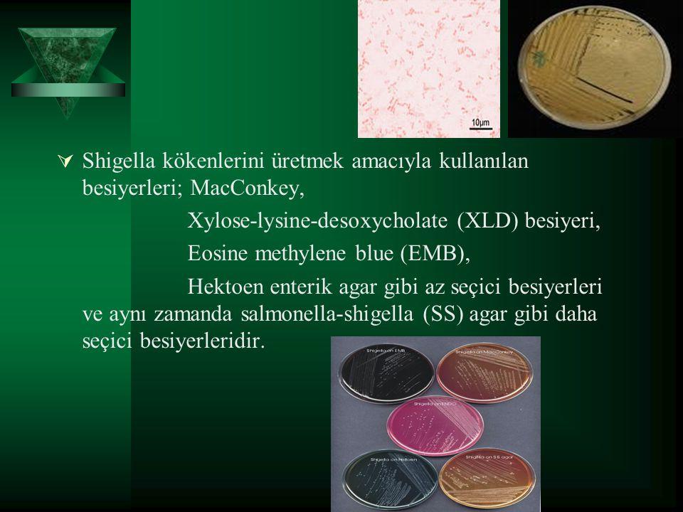  Shigella kökenlerini üretmek amacıyla kullanılan besiyerleri; MacConkey, Xylose-lysine-desoxycholate (XLD) besiyeri, Eosine methylene blue (EMB), He