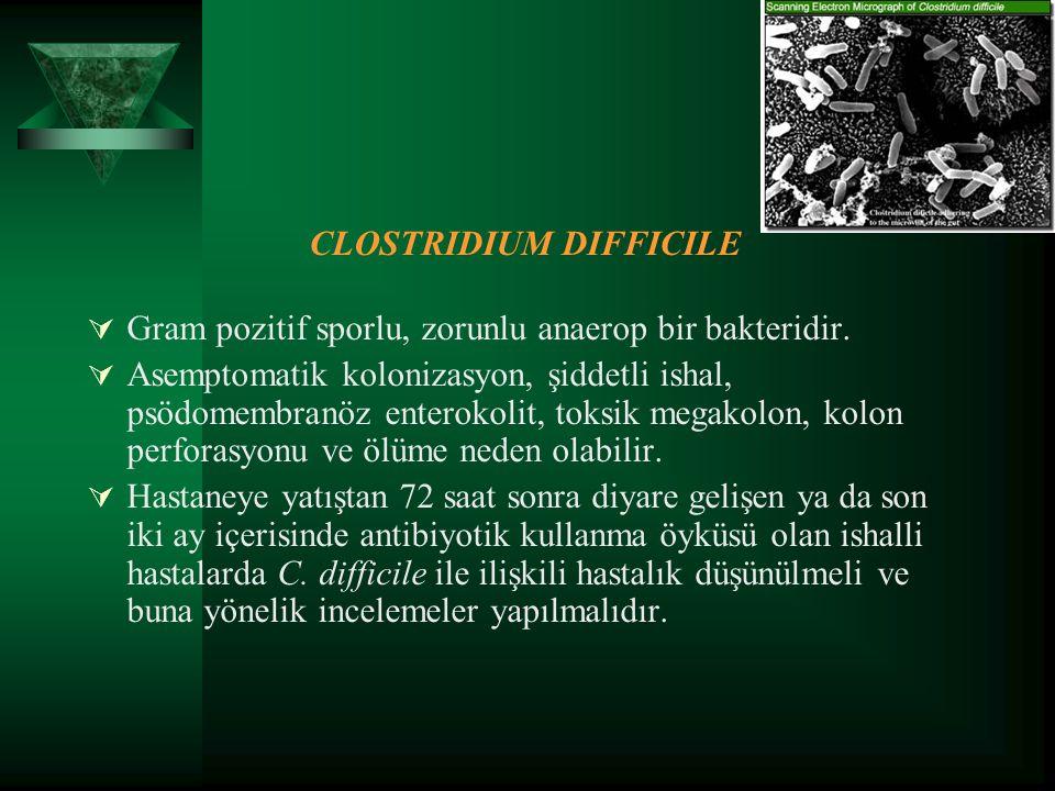 CLOSTRIDIUM DIFFICILE  Gram pozitif sporlu, zorunlu anaerop bir bakteridir.  Asemptomatik kolonizasyon, şiddetli ishal, psödomembranöz enterokolit,