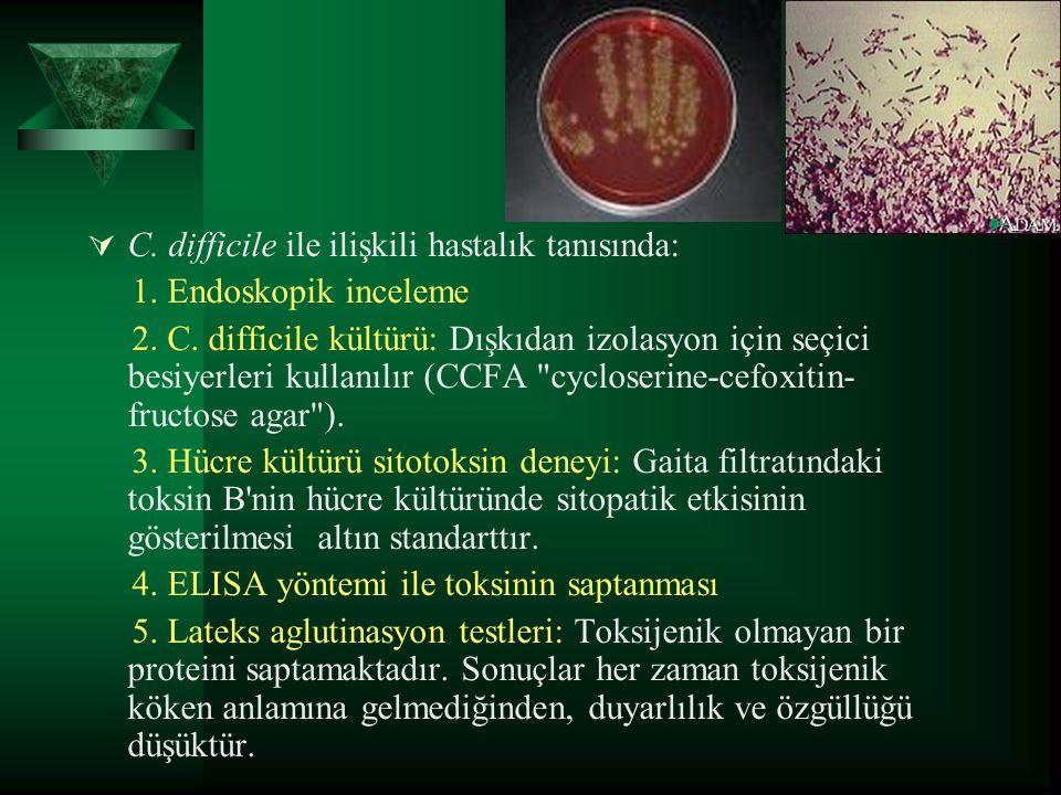  C. difficile ile ilişkili hastalık tanısında: 1. Endoskopik inceleme 2. C. difficile kültürü: Dışkıdan izolasyon için seçici besiyerleri kullanılır