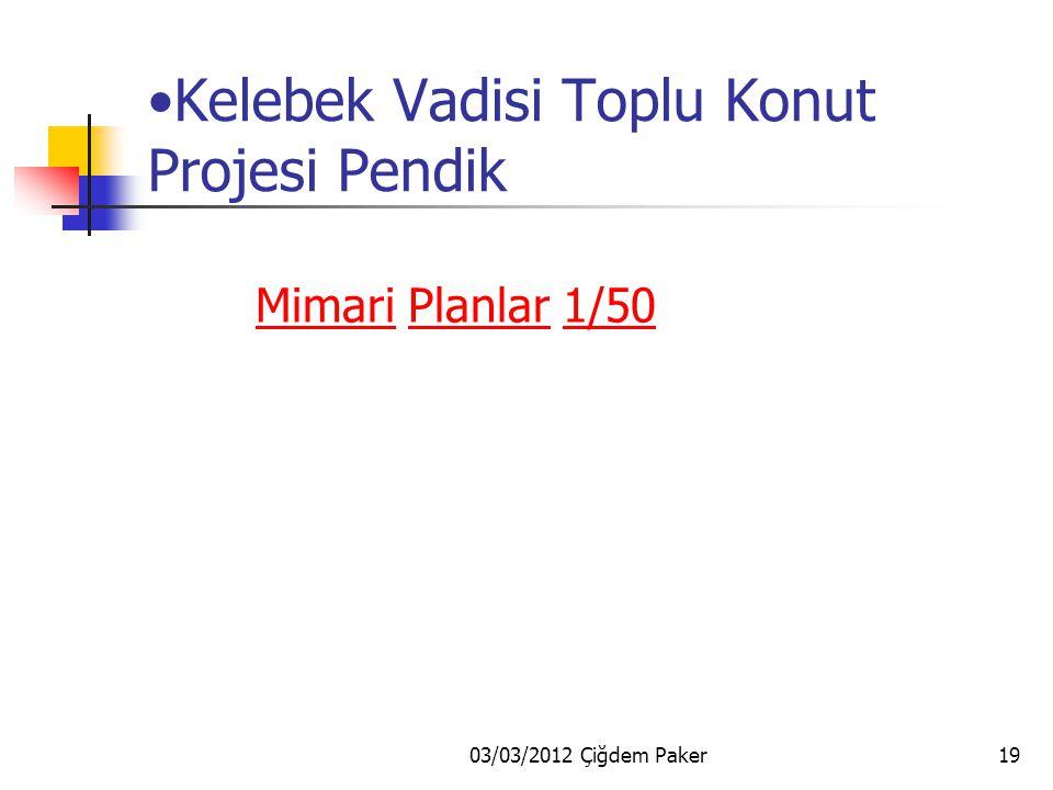 03/03/2012 Çiğdem Paker18