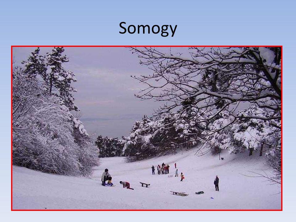 Somogy