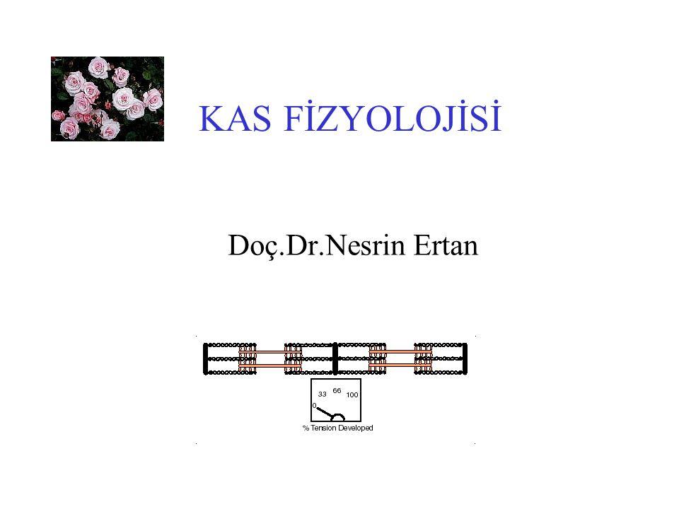 BÖLÜMLER 1.İskelet kasları 2.Düz kaslar 3.Periferik sinirler 4.Periferik sinir ve kas patolojileri