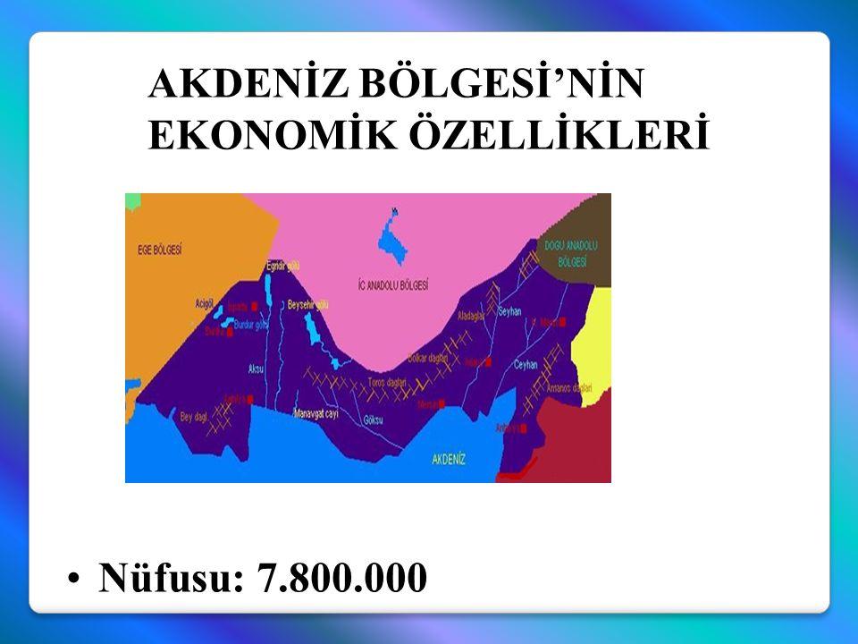Nüfusu: 7.800.000 AKDENİZ BÖLGESİ'NİN EKONOMİK ÖZELLİKLERİ
