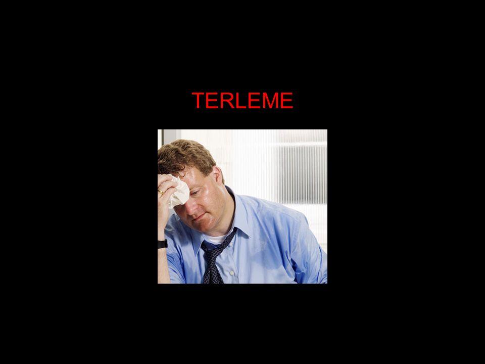 TERLEME