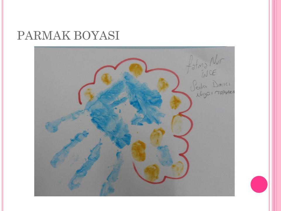 PARMAK BOYASI