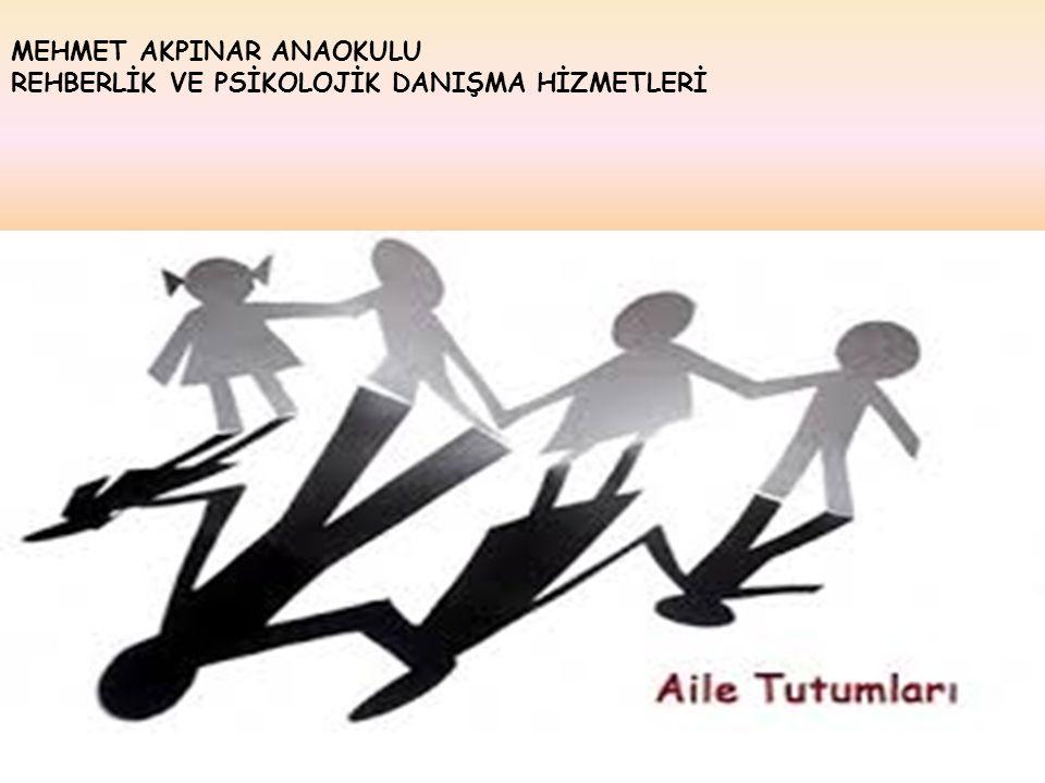 MEHMET AKPINAR ANAOKULU REHBERLİK VE PSİKOLOJİK DANIŞMA HİZMETLERİ