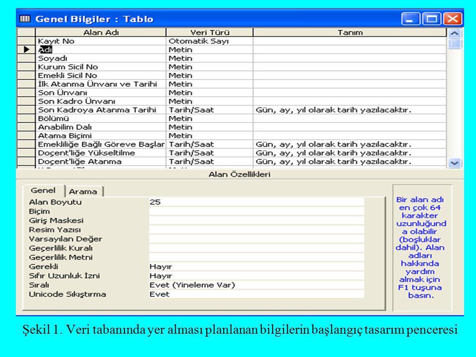 Şekil 1. Veri tabanında yer alması planlanan bilgilerin başlangıç tasarım penceresi