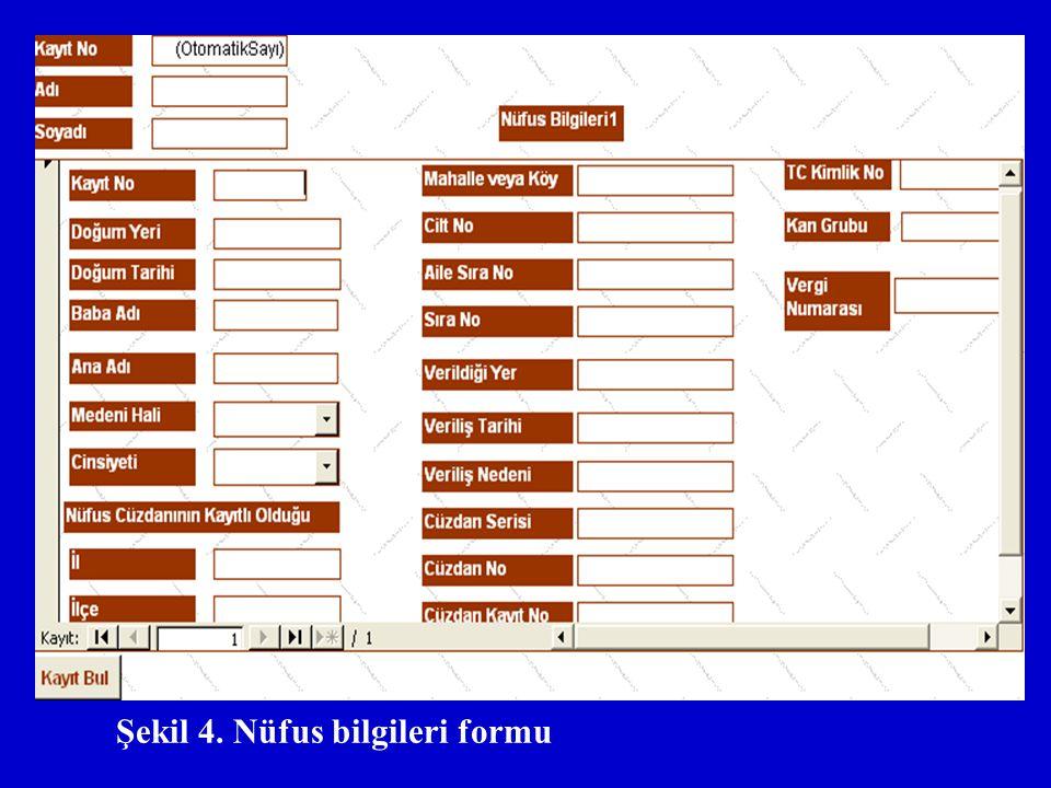 Şekil 4. Nüfus bilgileri formu