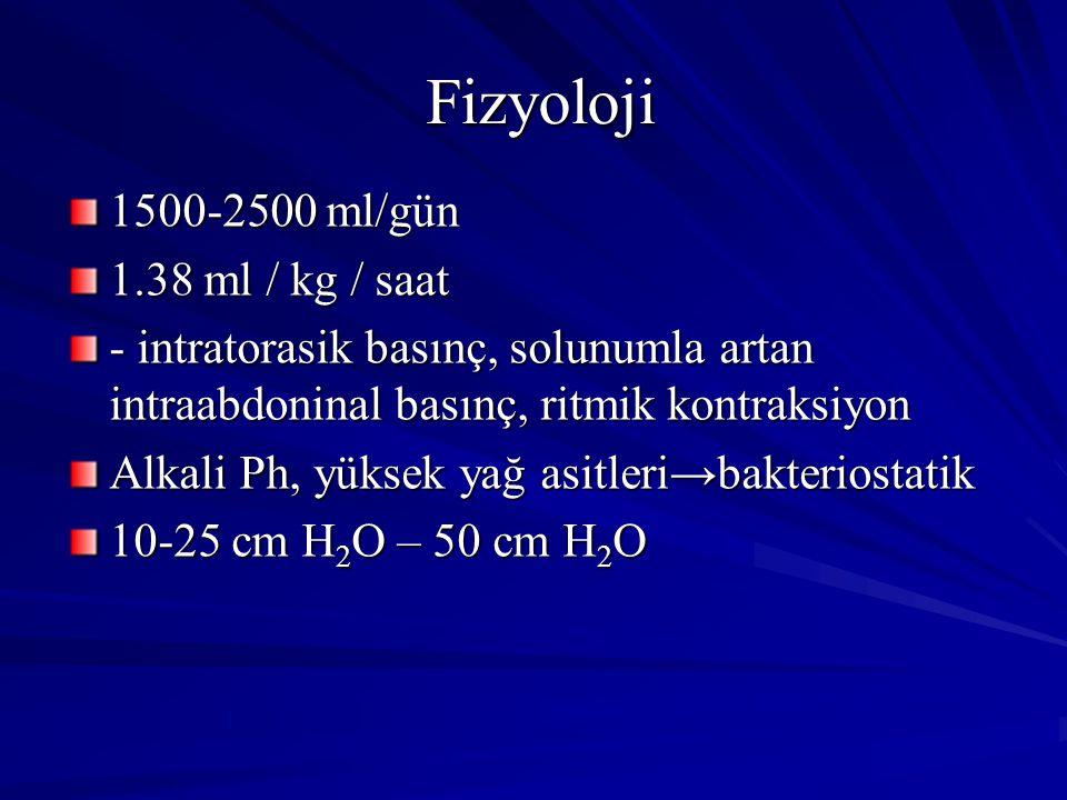 Fizyoloji 1500-2500 ml/gün 1.38 ml / kg / saat - intratorasik basınç, solunumla artan intraabdoninal basınç, ritmik kontraksiyon Alkali Ph, yüksek yağ