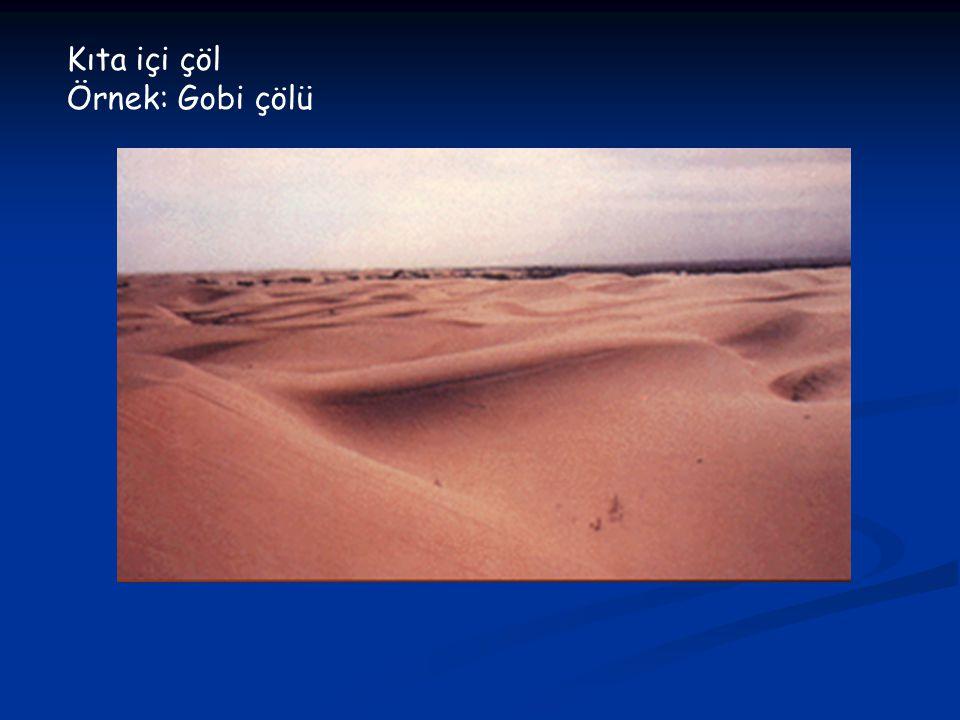 Kıta içi çöl Örnek: Gobi çölü