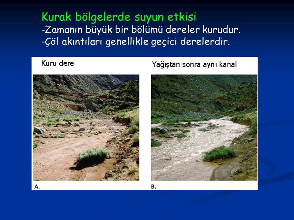 Kurak bölgelerde suyun etkisi -Zamanın büyük bir bölümü dereler kurudur.