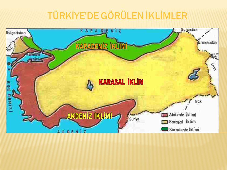 TÜRKİYE'DE GÖRÜLEN İKLİMLER