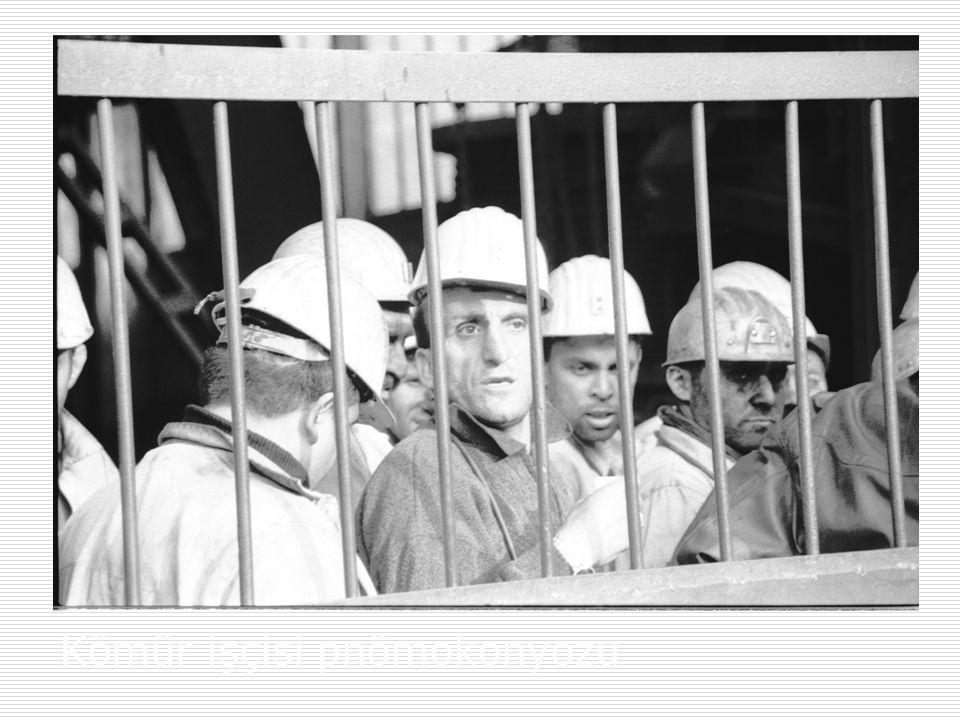 Kömür işçisi pnömokonyozu