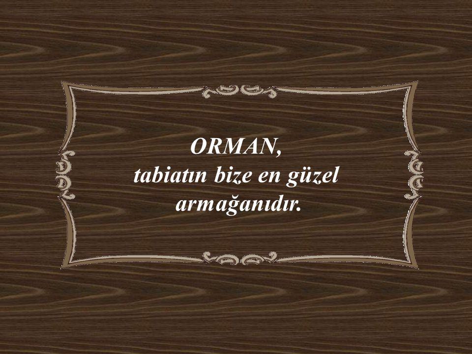 ORMAN, tabiatın bize en güzel armağanıdır.
