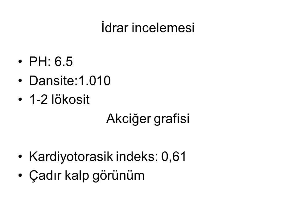 İdrar incelemesi PH: 6.5 Dansite:1.010 1-2 lökosit Akciğer grafisi Kardiyotorasik indeks: 0,61 Çadır kalp görünüm