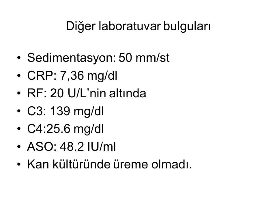 Diğer laboratuvar bulguları Sedimentasyon: 50 mm/st CRP: 7,36 mg/dl RF: 20 U/L'nin altında C3: 139 mg/dl C4:25.6 mg/dl ASO: 48.2 IU/ml Kan kültüründe üreme olmadı.