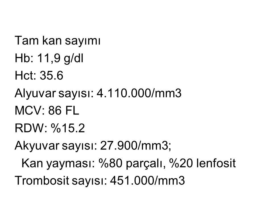 Tam kan sayımı Hb: 11,9 g/dl Hct: 35.6 Alyuvar sayısı: 4.110.000/mm3 MCV: 86 FL RDW: %15.2 Akyuvar sayısı: 27.900/mm3; Kan yayması: %80 parçalı, %20 lenfosit Trombosit sayısı: 451.000/mm3