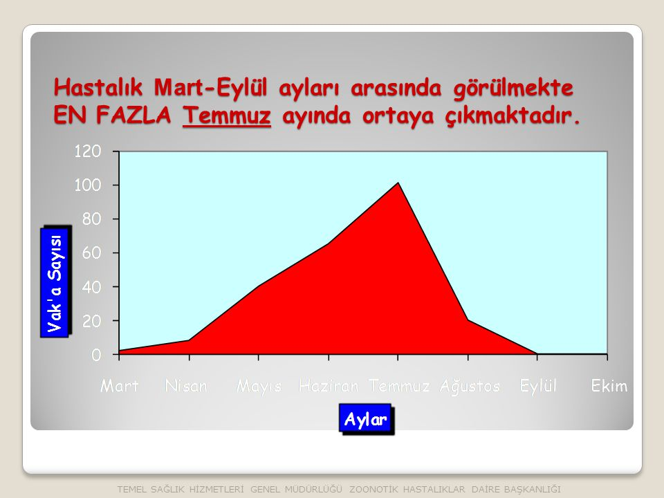 Hastalık Mart -Eylül ayları arasında görülmekte EN FAZLA Temmuz ayında ortaya çıkmaktadır.