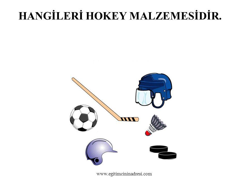 HANGİLERİ HOKEY MALZEMESİDİR. www.egitimcininadresi.com