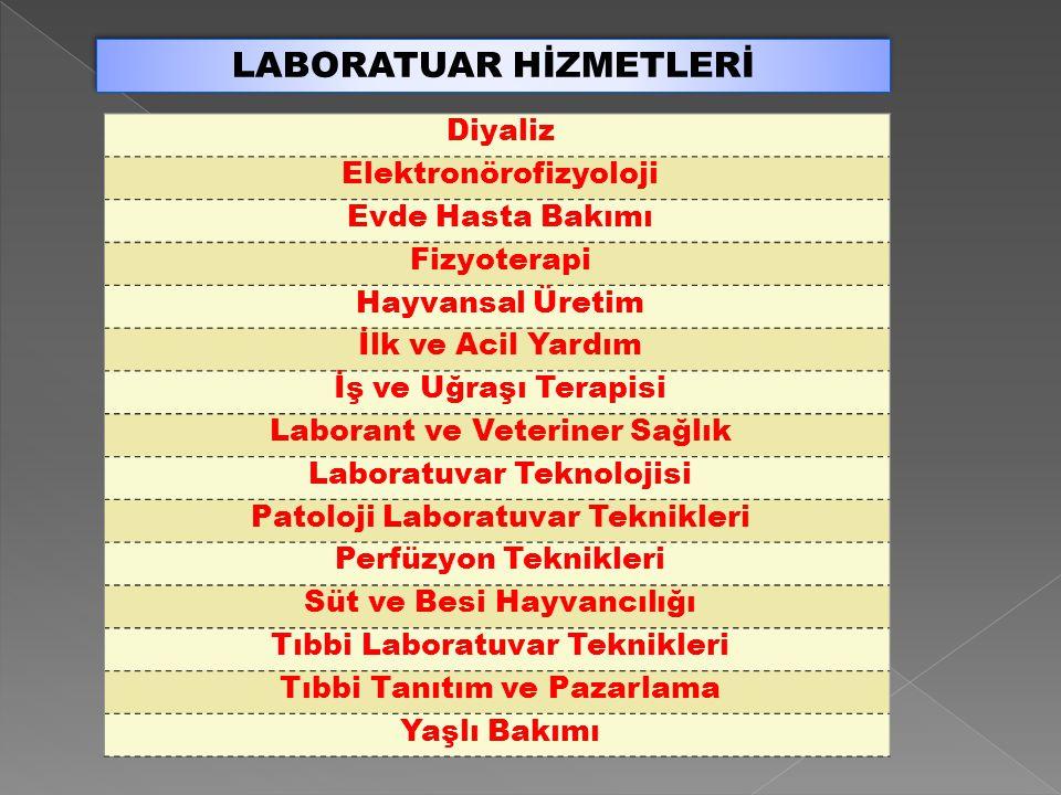 LABORATUAR HİZMETLERİ Diyaliz Elektronörofizyoloji Evde Hasta Bakımı Fizyoterapi Hayvansal Üretim İlk ve Acil Yardım İş ve Uğraşı Terapisi Laborant ve Veteriner Sağlık Laboratuvar Teknolojisi Patoloji Laboratuvar Teknikleri Perfüzyon Teknikleri Süt ve Besi Hayvancılığı Tıbbi Laboratuvar Teknikleri Tıbbi Tanıtım ve Pazarlama Yaşlı Bakımı