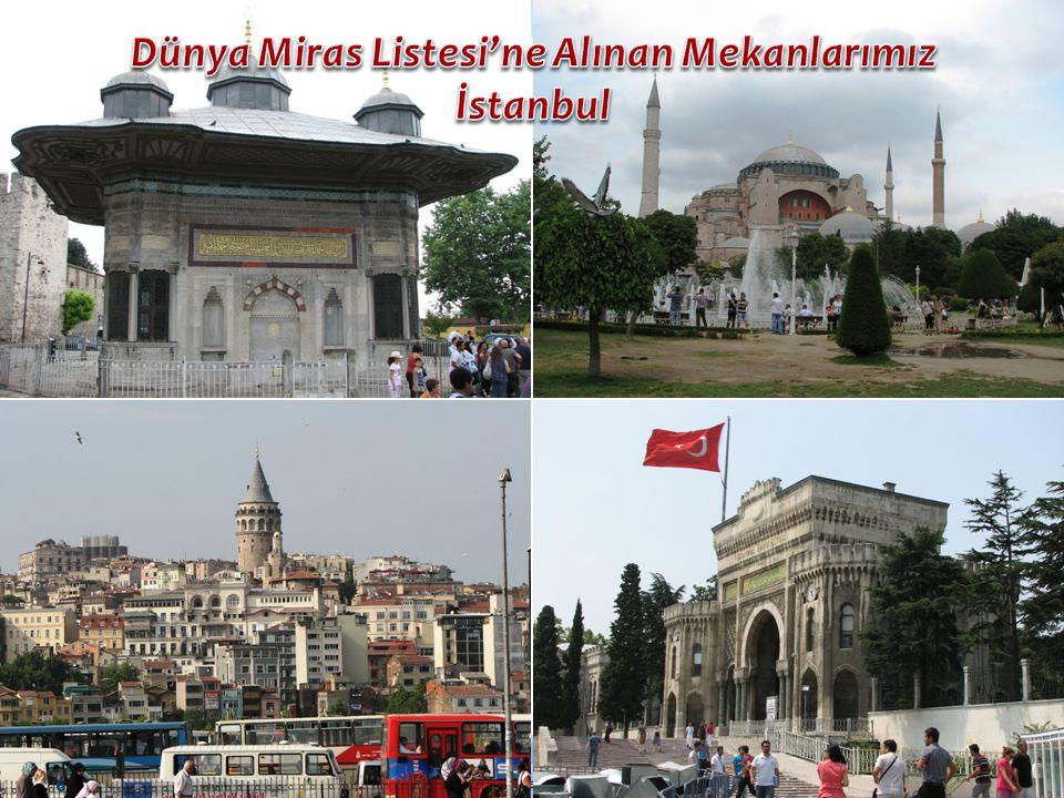 Mehmet Ali ERCAN – Balıkesir Merkez Bahçelievler Anadolu Lisesi 17