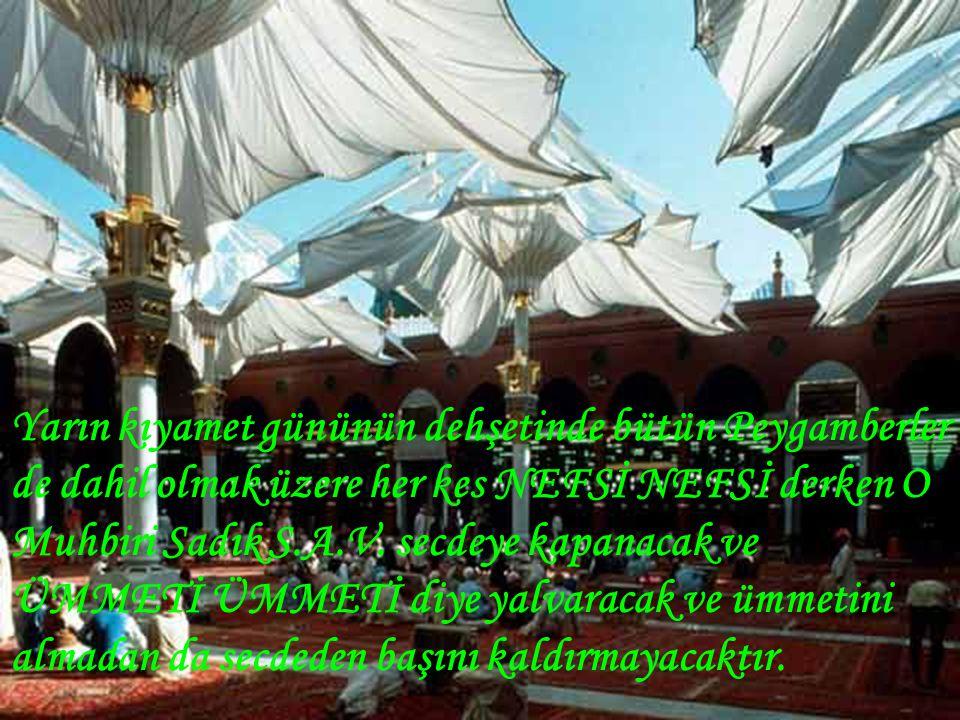 Yarın kıyamet gününün dehşetinde bütün Peygamberler de dahil olmak üzere her kes NEFSİ NEFSİ derken O Muhbiri Sadık S.A.V.