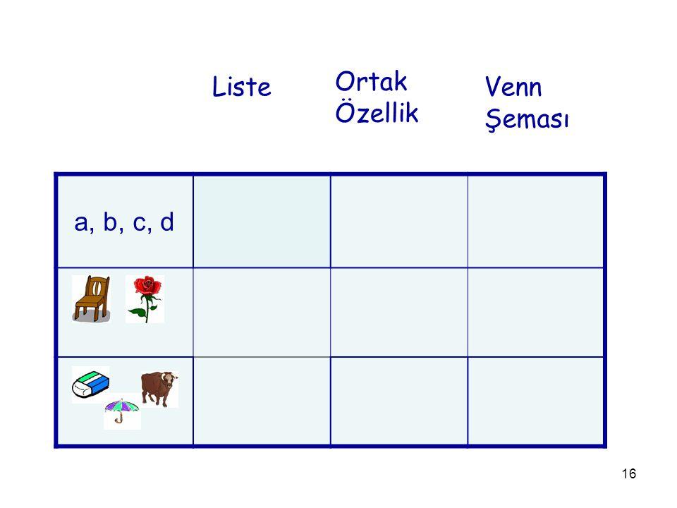 16 a, b, c, d Liste Ortak Özellik Venn Şeması