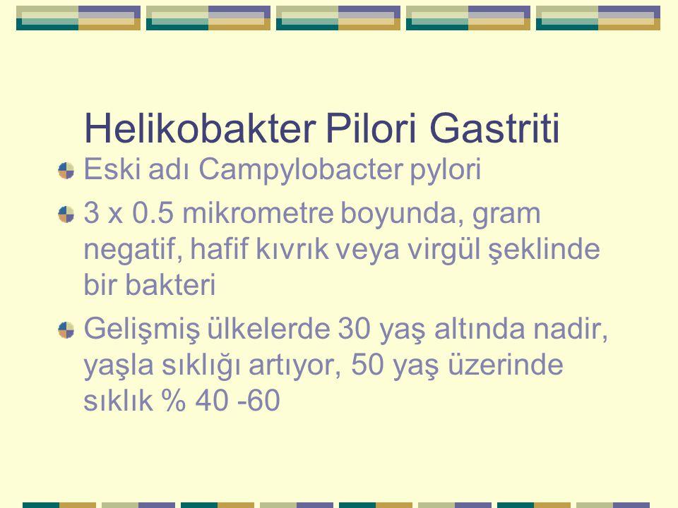 Helikobakter Pilori Gastriti Eski adı Campylobacter pylori 3 x 0.5 mikrometre boyunda, gram negatif, hafif kıvrık veya virgül şeklinde bir bakteri Gel