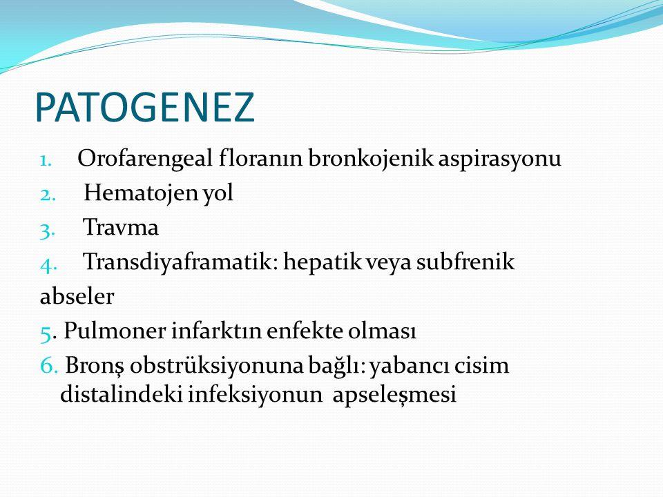 PATOGENEZ 1. Orofarengeal floranın bronkojenik aspirasyonu 2. Hematojen yol 3. Travma 4. Transdiyaframatik: hepatik veya subfrenik abseler 5. Pulmoner