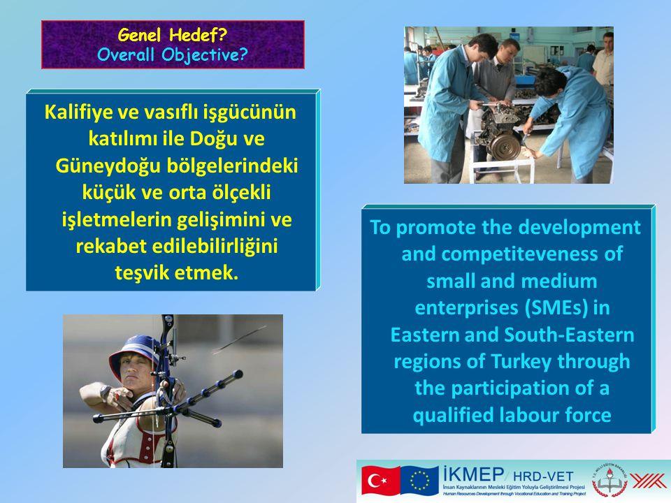 Kalifiye ve vasıflı işgücünün katılımı ile Doğu ve Güneydoğu bölgelerindeki küçük ve orta ölçekli işletmelerin gelişimini ve rekabet edilebilirliğini