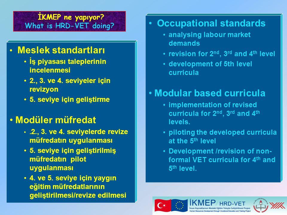 Meslek standartları İş piyasası taleplerinin incelenmesi 2., 3. ve 4. seviyeler için revizyon 5. seviye için geliştirme Modüler müfredat. 2., 3. ve 4.
