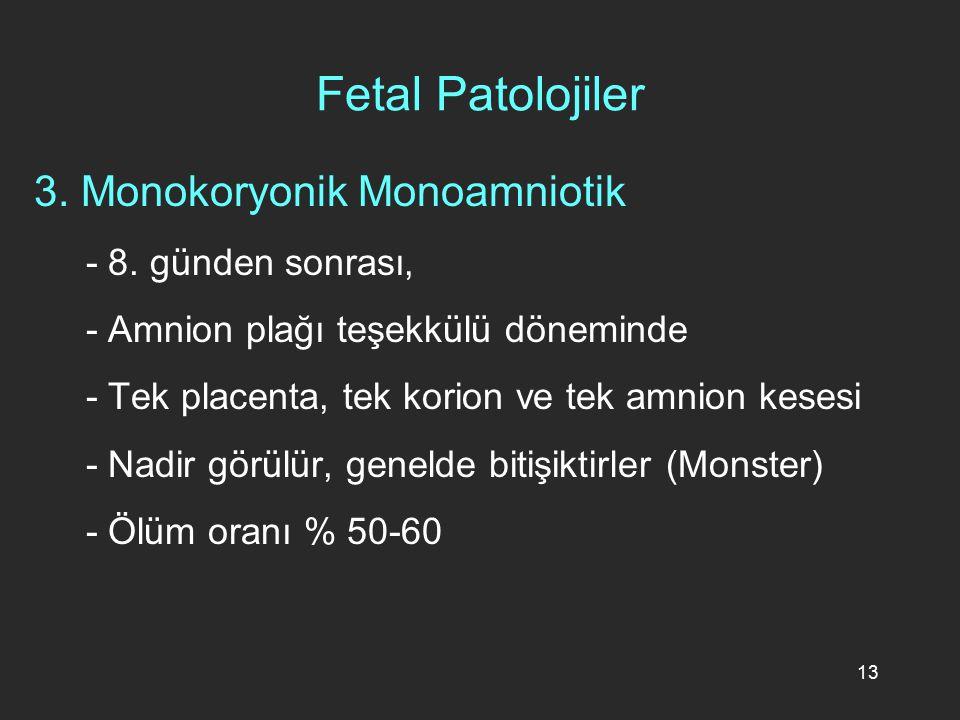13 Fetal Patolojiler 3. Monokoryonik Monoamniotik - 8. günden sonrası, - Amnion plağı teşekkülü döneminde - Tek placenta, tek korion ve tek amnion kes