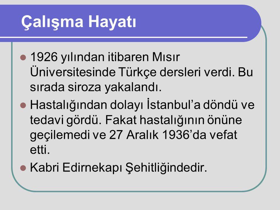 Çalışma Hayatı 1926 yılından itibaren Mısır Üniversitesinde Türkçe dersleri verdi. Bu sırada siroza yakalandı. Hastalığından dolayı İstanbul'a döndü v