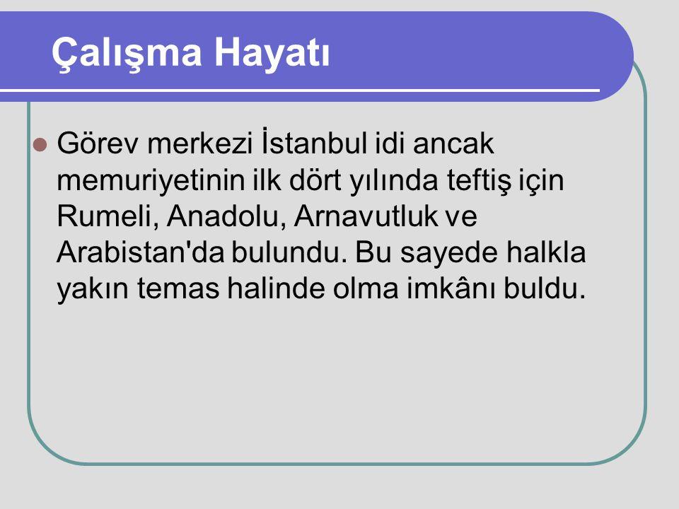 Çalışma Hayatı Görev merkezi İstanbul idi ancak memuriyetinin ilk dört yılında teftiş için Rumeli, Anadolu, Arnavutluk ve Arabistan'da bulundu. Bu say