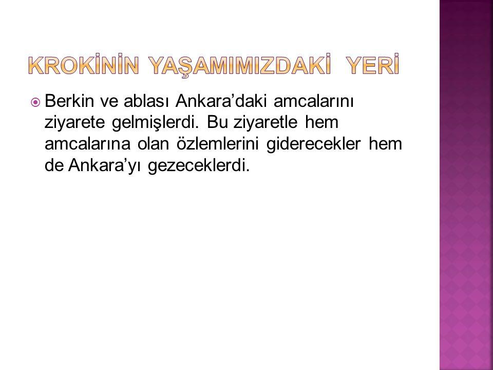  Berkin ve ablası Ankara'daki amcalarını ziyarete gelmişlerdi.