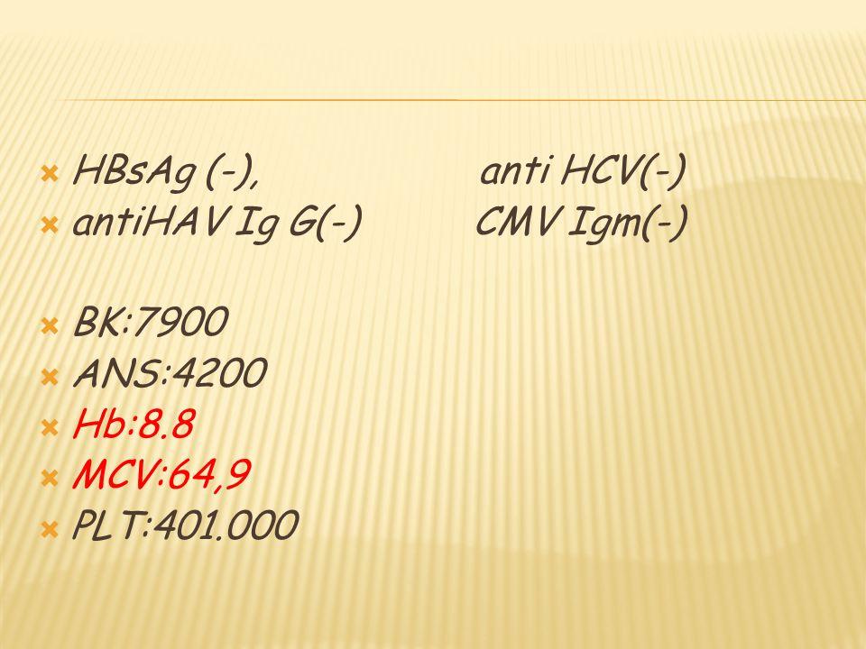 06.05.14  HBSAG :N-0.27  ANTİ HBS:P-> 1000.00  ANTİ HBC IGG:P-9.51  ANTİ HBC IGM:N-0.05  ANTİ HAV IGG:P-10.27  ANTİ HAV IGM:N-0.40  ANTİ HCV:N  Alfa 1 antitripsin: normal sınırlarda