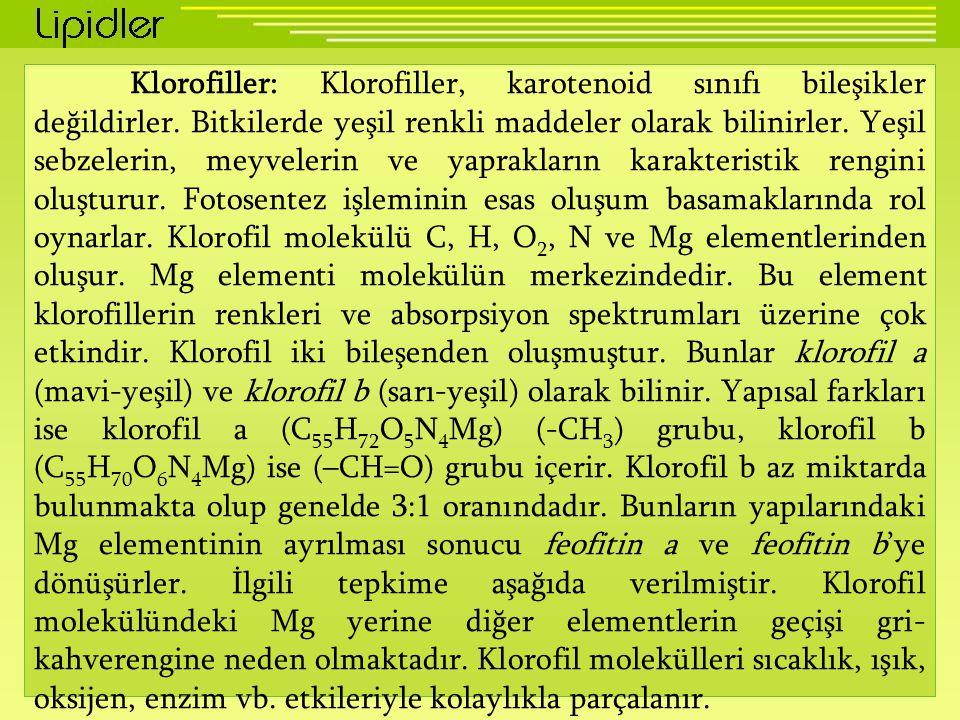 Klorofiller: Klorofiller, karotenoid sınıfı bileşikler değildirler. Bitkilerde yeşil renkli maddeler olarak bilinirler. Yeşil sebzelerin, meyvelerin v