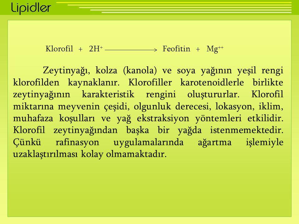 Klorofil + 2H + Feofitin + Mg ++ Zeytinyağı, kolza (kanola) ve soya yağının yeşil rengi klorofilden kaynaklanır.