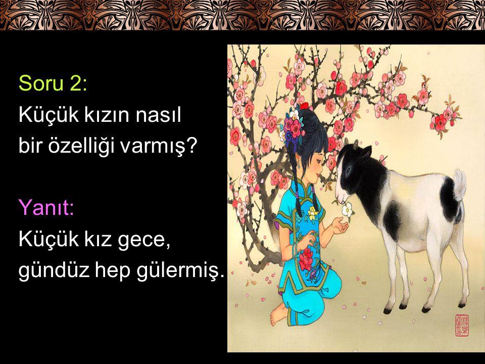 Soru 3: Küçük kıza babası ne ad vermiş? Yanıt: Küçük kıza babası Güler adını vermiş.