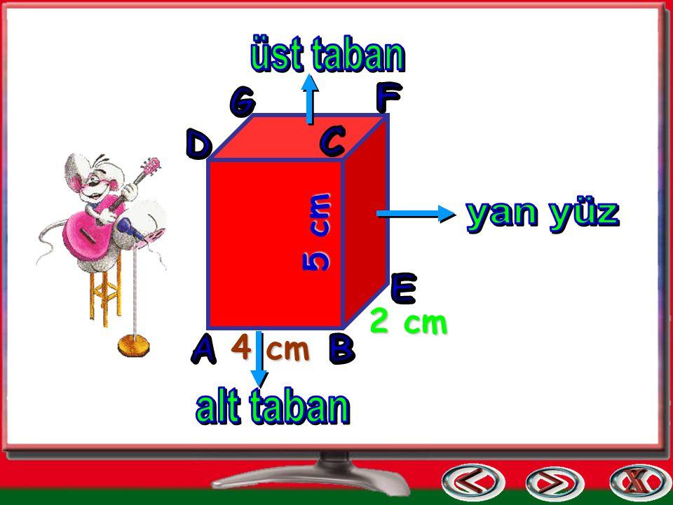 8 köşesi vardır. Yüzeyleri dikdörtgen şeklindedir. (Dikdörtgense l bölgedir.)
