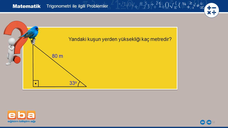 12 Yandaki kuşun yerden yüksekliği kaç metredir? Trigonometri ile ilgili Problemler 80 m 33 o