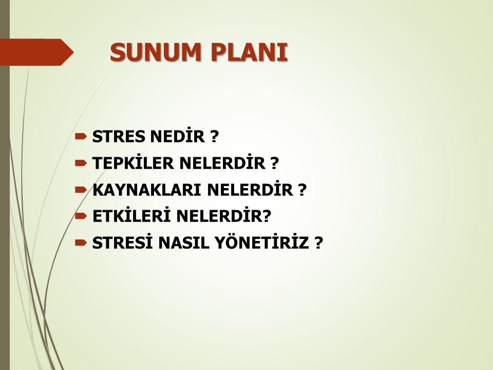 SUNUM PLANI  STRES NEDİR ?  TEPKİLER NELERDİR ?  KAYNAKLARI NELERDİR ?  ETKİLERİ NELERDİR?  STRESİ NASIL YÖNETİRİZ ?