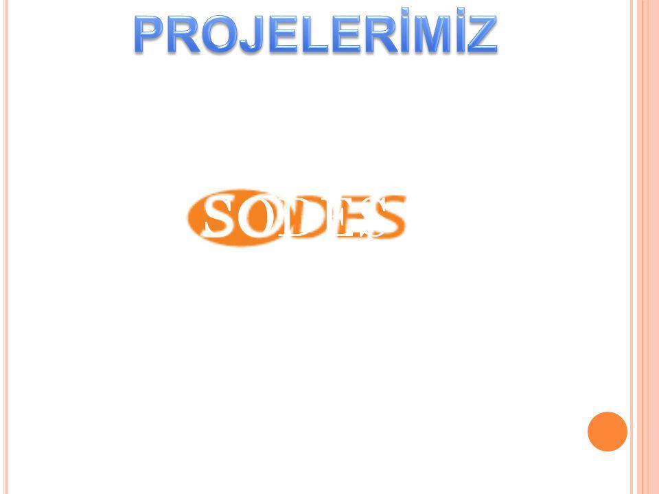 SODES