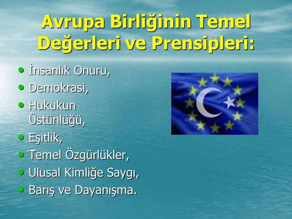 Avrupa Birliğinin Temel Değerleri ve Prensipleri: İnsanlık Onuru, Demokrasi, Hukukun Üstünlüğü, Eşitlik, Temel Özgürlükler, Ulusal Kimliğe Saygı, Barı