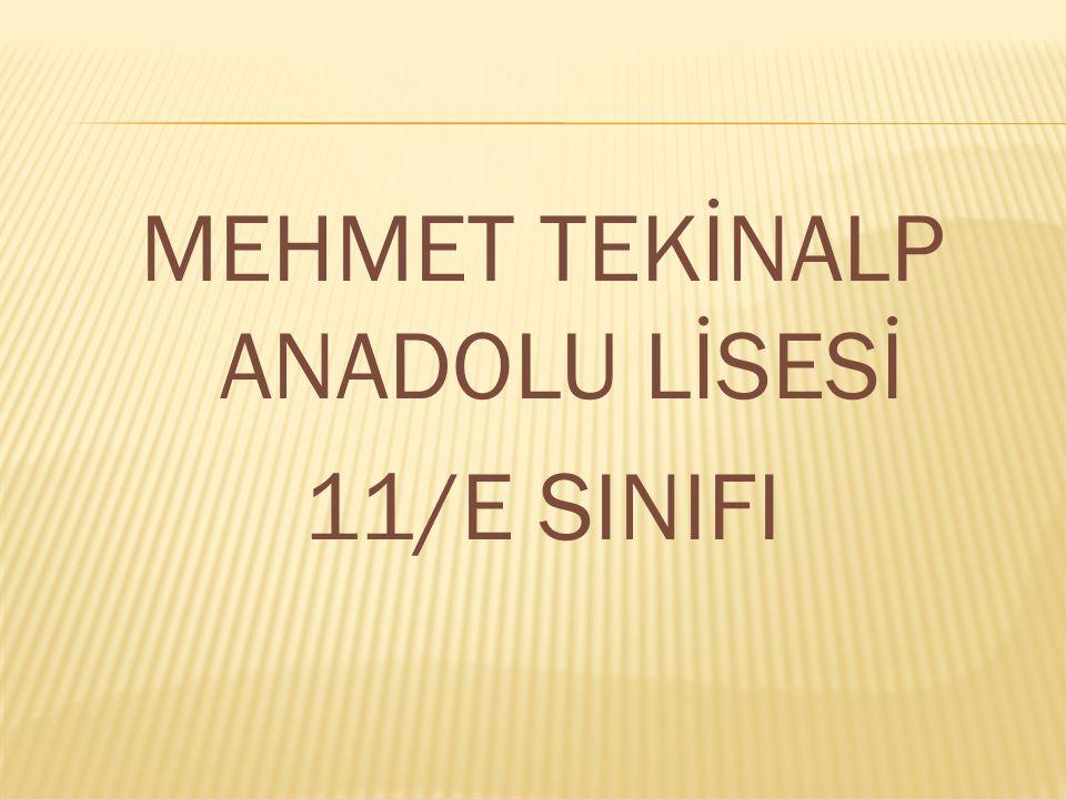 MEHMET TEKİNALP ANADOLU LİSESİ 11/E SINIFI