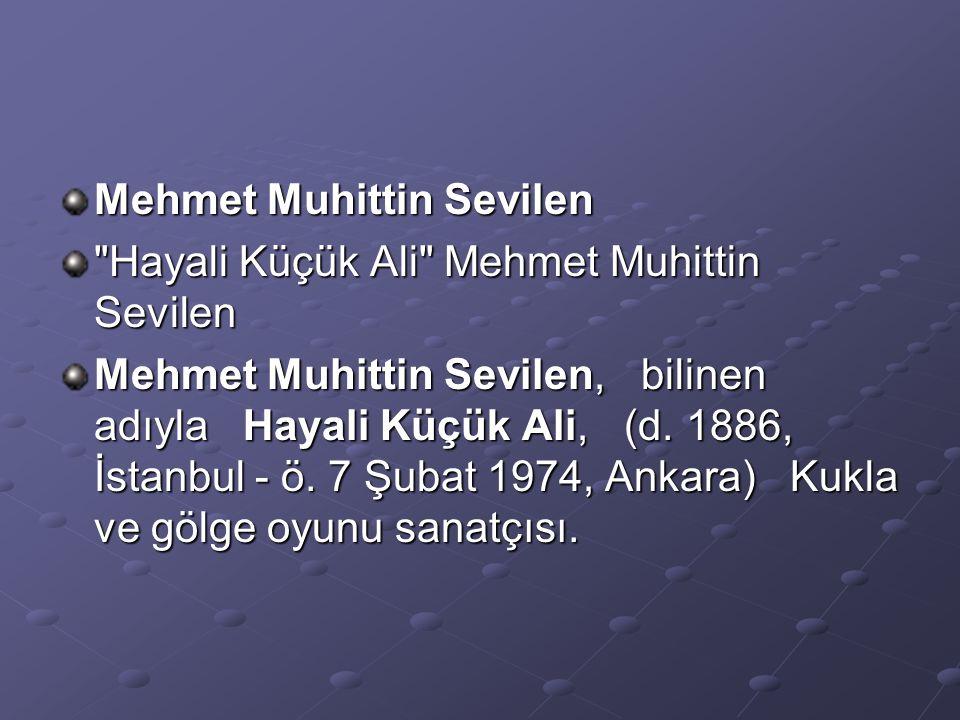 Mehmet Muhittin Sevilen